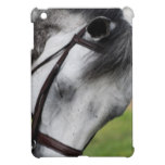 Sweet Appaloosa Horse iPad Mini Cover