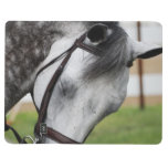 Sweet Appaloosa Horse Journal
