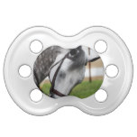 Sweet Appaloosa Horse Pacifier