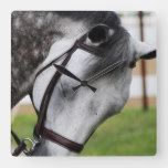 Sweet Appaloosa Horse Square Wall Clock