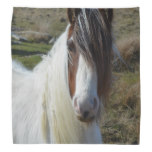 Sweet Connemera Pony Bandana