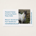 Sweet Connemera Pony Business Card
