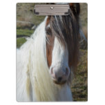 Sweet Connemera Pony Clipboard