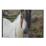 Sweet Connemera Pony Cover For iPad Air