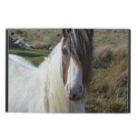 Sweet Connemera Pony iPad Air Cases