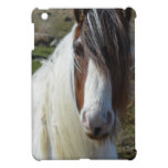 Sweet Connemera Pony iPad Mini Case