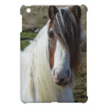 Sweet Connemera Pony iPad Mini Cover