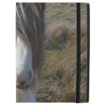"Sweet Connemera Pony iPad Pro 12.9"" Case"