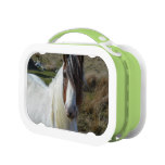 Sweet Connemera Pony Lunch Box