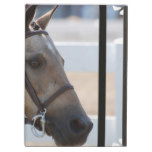 Sweet Roan Pony Case For iPad Air