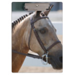 Sweet Roan Pony Clipboard