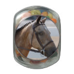 Sweet Roan Pony Glass Jar