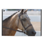 Sweet Roan Pony iPad Air Case