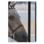 Sweet Roan Pony iPad Mini Case