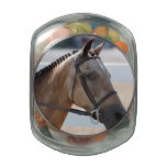 Sweet Roan Pony Jelly Belly Candy Jar