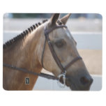 Sweet Roan Pony Journal