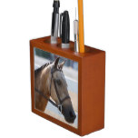 Sweet Roan Pony Pencil Holder