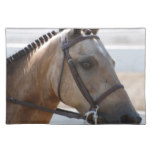 Sweet Roan Pony Placemat