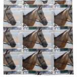 Sweet Roan Pony Shower Curtain