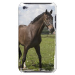 Thoroughbred Horse iTouch Case