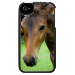 Thoroughbred Selections Horse iPhone Case