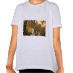 Wild Horses Photo Girl's T-Shirt