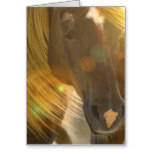Wild Horses Photo Greeting Card