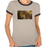 Wild Horses Photo Ladies T-Shirt
