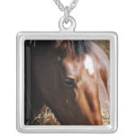 Yearling Sterling Silver Necklace