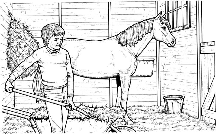 free horse coloring pages