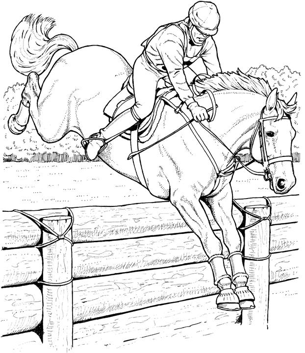 - Free Horse Coloring Pages